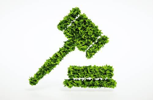 Derecho ambiental en guadalajara